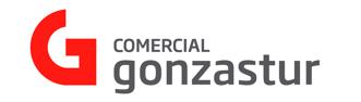 Logo Gonzastur